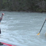 SUP Tours on the Kicking Horse
